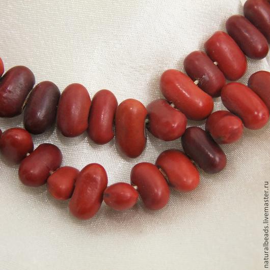 Для украшений ручной работы. Ярмарка Мастеров - ручная работа. Купить КРАСНАЯ ФАСОЛЬ бусины семена натуральные. Handmade.