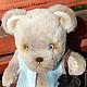 """Мишки Тедди ручной работы. Заказать Мишка тедди """"Проша"""". medwedko ( Мария) Дом медвежонка. Ярмарка Мастеров."""