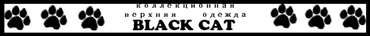 Black Cat (Blackcat)