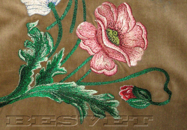 фото цветов с большими листьями в горшках с названиями