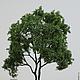 Дерево для макета или кукольного сада - без породы