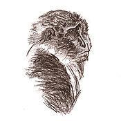 Картины и панно ручной работы. Ярмарка Мастеров - ручная работа Картина Портрет обезьяны, рисунок карандаш графика коричневый обезьяна. Handmade.