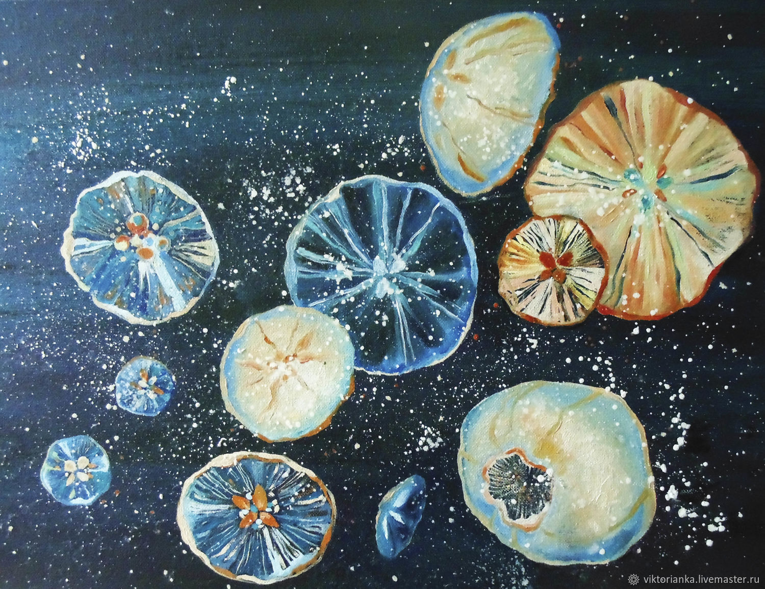 Space jellyfish oil Painting, Pictures, Yevpatoriya,  Фото №1