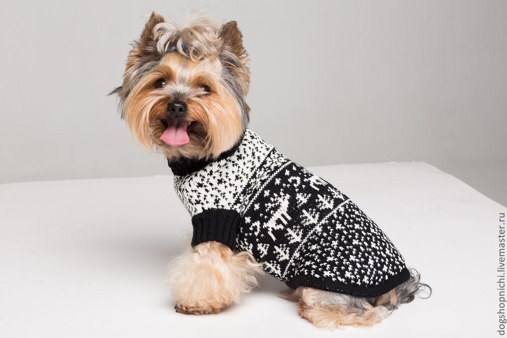 Свитер для собак с оленями авторская работа, Одежда для питомцев, Рига, Фото №1