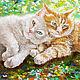 Картина маслом , Картина в подарок, картина с котами, Картины, Находка,  Фото №1