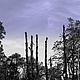 Стильное оформление Вашего интерьера и дорогих Сердцу предметов\ Снимок из серии `Философия Жизни Городов` © Angelika Nabokova