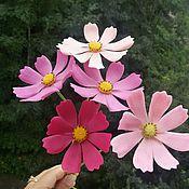 Цветы и флористика ручной работы. Ярмарка Мастеров - ручная работа Букет космей. Handmade.