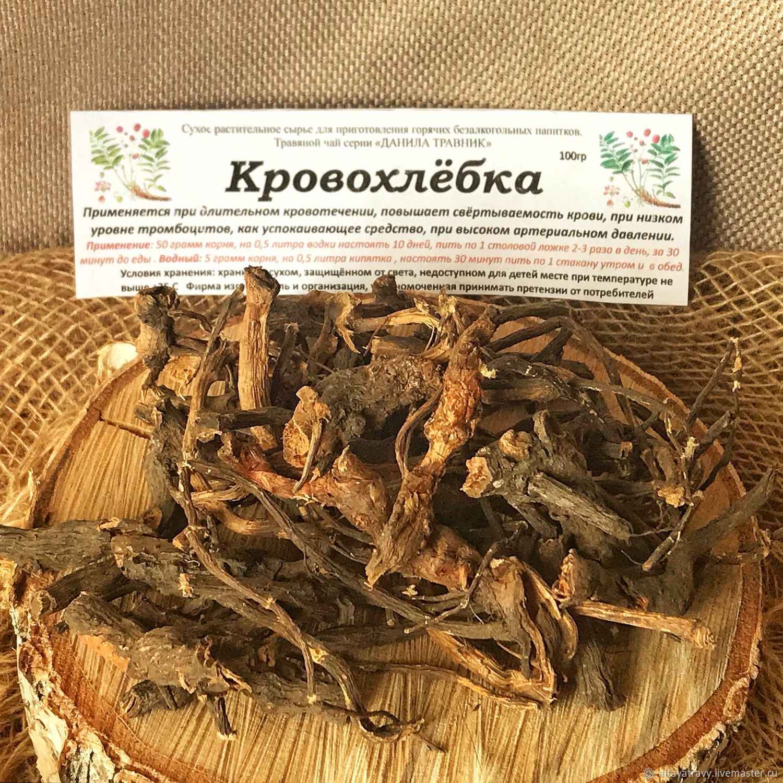 Hemlock root, Grass, Kemerovo,  Фото №1
