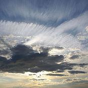 Картины и панно ручной работы. Ярмарка Мастеров - ручная работа белый ветер-художественное фото. Handmade.