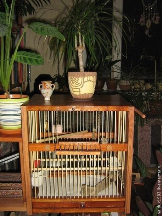 Для других животных, ручной работы. Ярмарка Мастеров - ручная работа. Купить Клетка для птицы. Handmade. Разноцветный, клетка декоративная