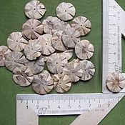 Материалы для творчества ручной работы. Ярмарка Мастеров - ручная работа бусины из кокоса цветок пшеницы. Handmade.