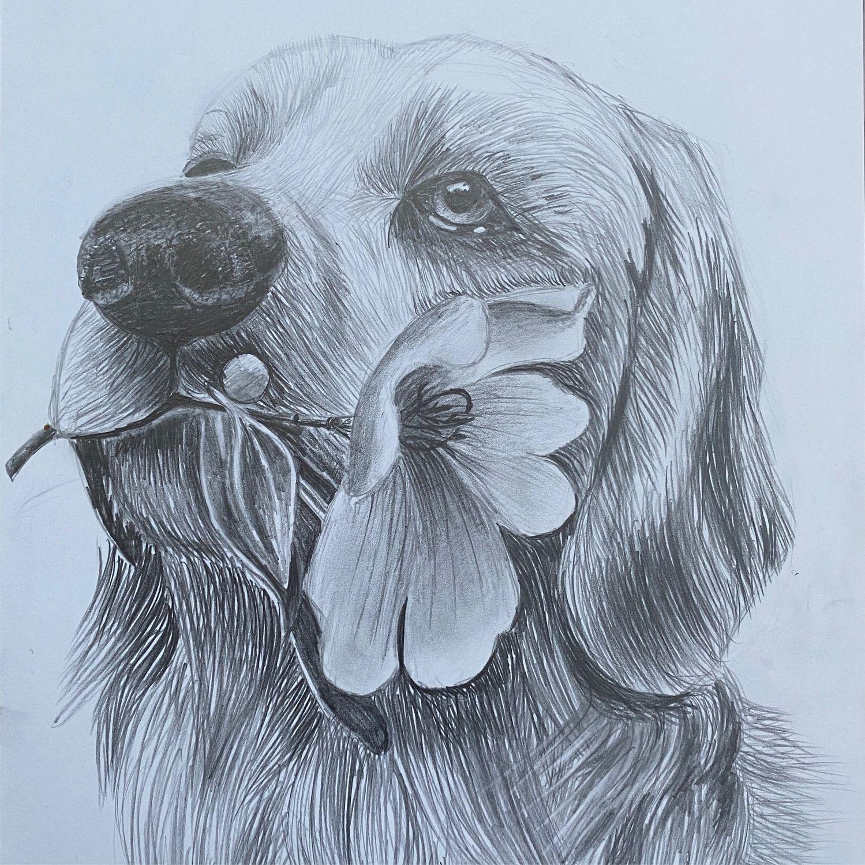 Картина карандашом Графика Картина Собака, Картины, Уфа,  Фото №1