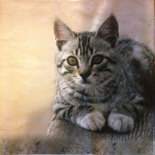 Салфетка для декупажа-Милые котята, кошечки - как настоящие Декупажная радость