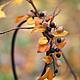 """Диадемы, обручи ручной работы. Ярмарка Мастеров - ручная работа. Купить Ободок """"дыхание осени"""" с черноплодной рябиной и сухоцветами. Handmade."""