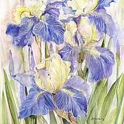 Картины и панно handmade. Livemaster - original item Copy of Painting watercolor with irises and birds Kinglet blue irises. Handmade.