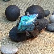 Украшения handmade. Livemaster - original item Ring with Labrador and blue patina. Handmade.