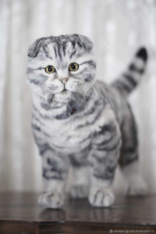 Шотландская вислоухая кошка в стиле тедди натюр, Мягкие игрушки, Тюмень,  Фото №1