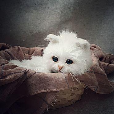 Куклы и игрушки ручной работы. Ярмарка Мастеров - ручная работа Тедди Зверята: белый котенок. Handmade.