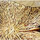 """Конфетницы, сахарницы ручной работы. Деревянная тарелочка """"Кленовый лист"""".. VZBRELO. Ярмарка Мастеров. Тарелка декоративная, конфетница, для уюта"""