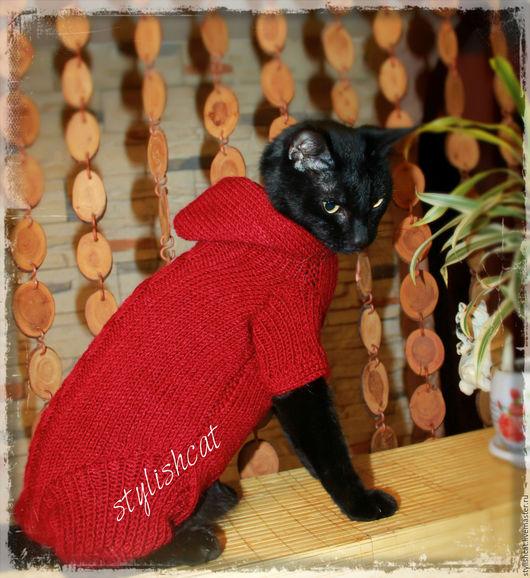 Одежда для кошек, ручной работы. Ярмарка Мастеров - ручная работа. Купить Одежда для кошек.Комбинезон с удлинёнными лапками. Handmade. Бордовый