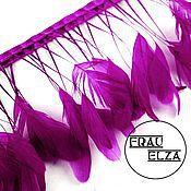 Перья петуха на ножках Пурпур