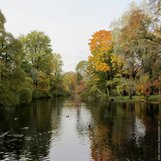осень. осенний. осенняя. осенний пейзаж. осенние краски.  фотокартина осень.  фотокартина осенняя. желтый. бежевый. зеленый. вода.картина осень. картина пруд. картина осенний пруд. осень и вода.