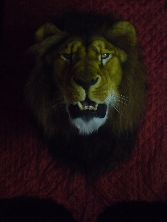 Подарок для мужчины Льва 90
