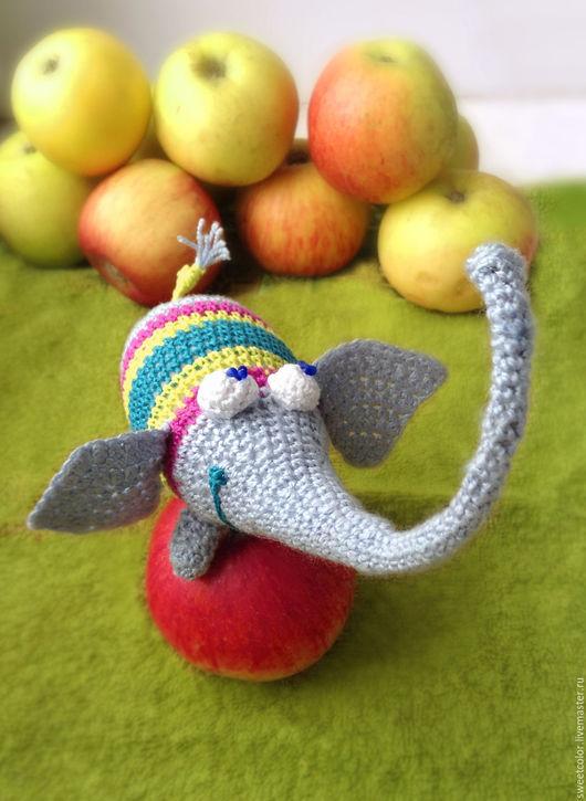 Слон-МАТВЕЙ. Застенчивый. Любит яблоки и ждёт своего хозяина.