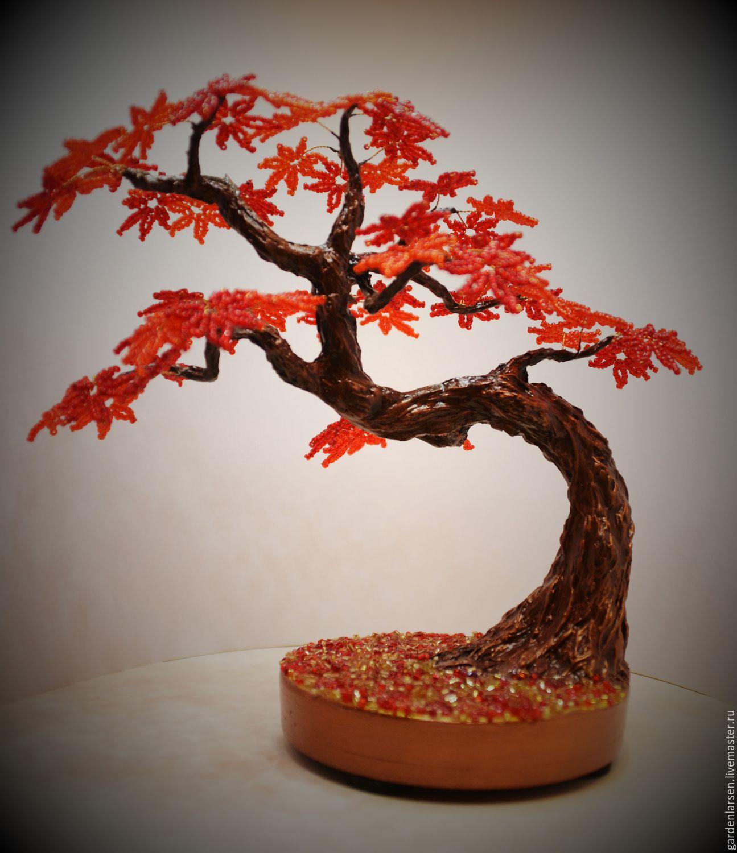 Деревца бонсай своими руками