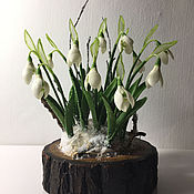 Цветы и флористика ручной работы. Ярмарка Мастеров - ручная работа Пробился подснежник сквозь корочку льда...... Handmade.