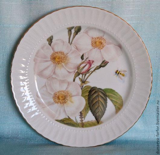 Розовато-палевые цветы шиповника, нежный бутон и задумчивая пчела.