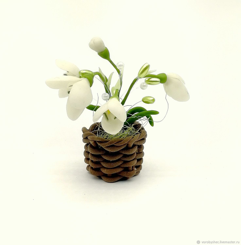 Цветы подснежники фото в корзине