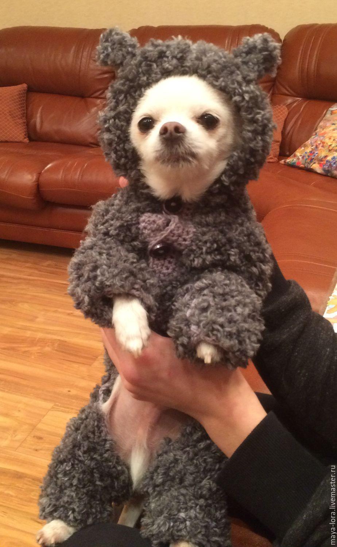 Вязаная одежда для собак-куплю