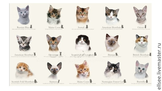"""Шитье ручной работы. Ярмарка Мастеров - ручная работа. Купить Панель """"Коллекция котов"""". Handmade. Ткани, ткани коты"""