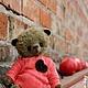 Мишки Тедди ручной работы. Парень с соседнего двора. Egeniya Peskova (Bruno-bay). Ярмарка Мастеров. Авторская работа