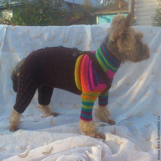 Одежда для собак, ручной работы. Ярмарка Мастеров - ручная работа. Купить Одежда для собак. Штанишки для собачки. Handmade. Одежда для собак
