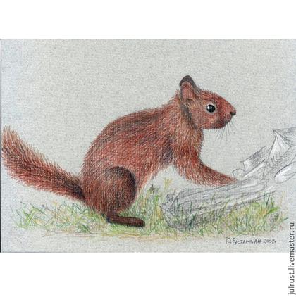 Животные ручной работы. Ярмарка Мастеров - ручная работа Картина Любопытная белка рисунок рыжий цветной карандаш. Handmade.