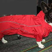 Для домашних животных, ручной работы. Ярмарка Мастеров - ручная работа Дождевик и пальто для корги. Handmade.