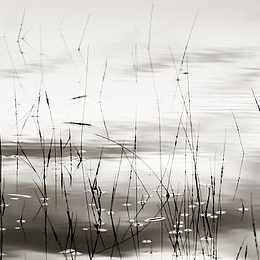 Картины и панно ручной работы. Ярмарка Мастеров - ручная работа Черно белая фотокартина природа для интерьера «Обитель спокойствия». Handmade.