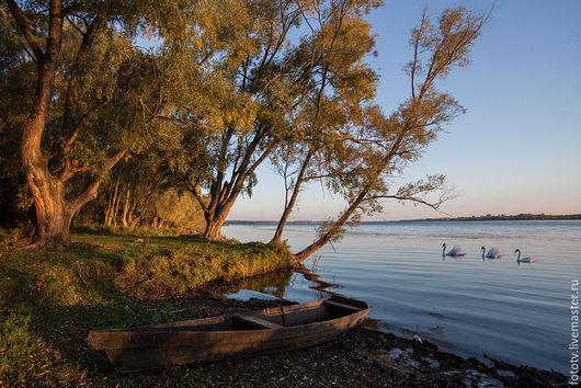 Фотокартины ручной работы. Ярмарка Мастеров - ручная работа. Купить Утро на озере. Handmade. Фотокартина, пейзаж, озеро, водоем, лебеди