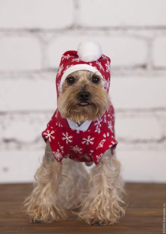 Одежда для собак, ручной работы. Ярмарка Мастеров - ручная работа. Купить Байка С Новым Годом!. Handmade. Комбинированный, одежда