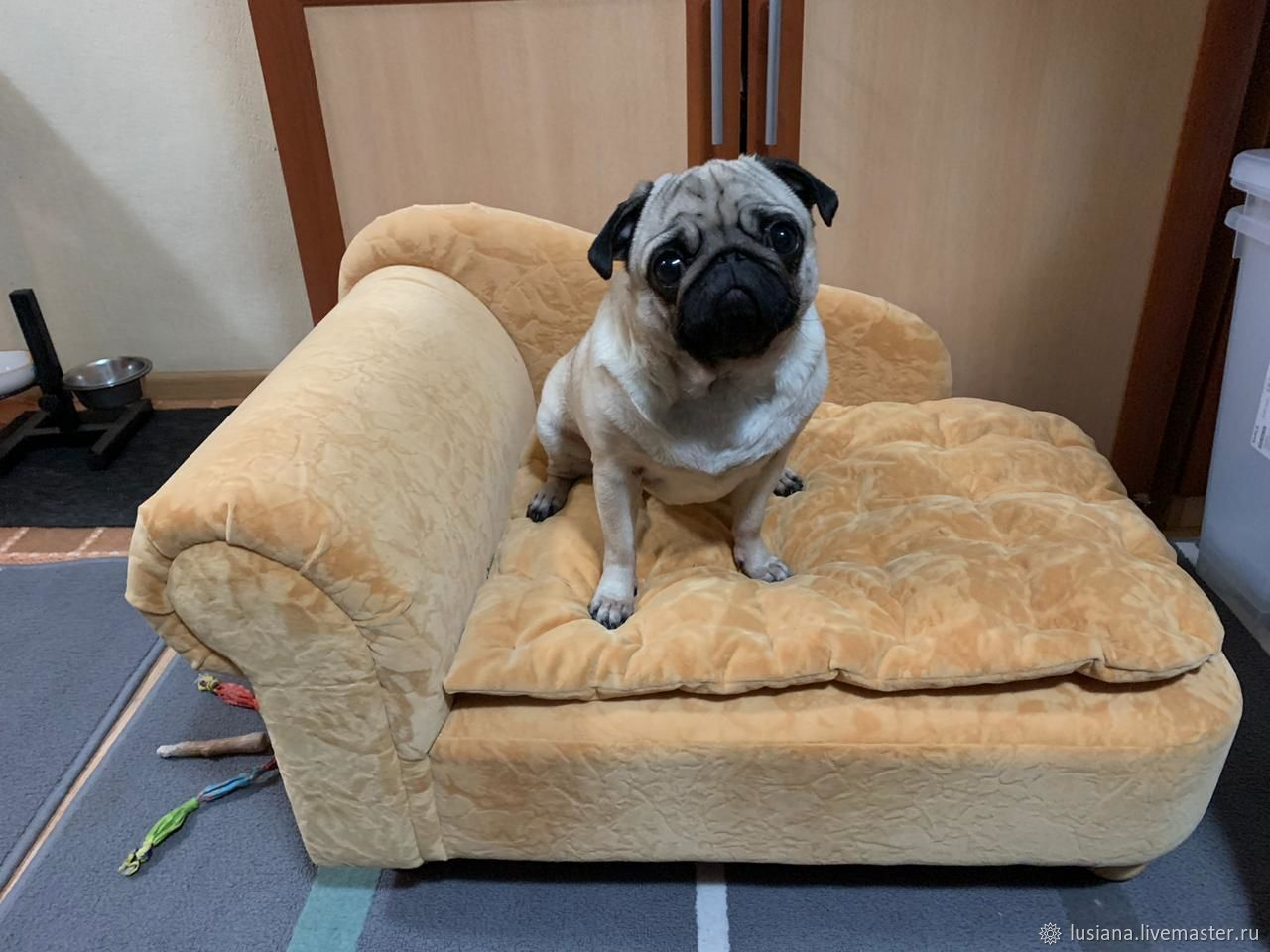 Sofa for a dog / cat to buy. Sofa for dogs order, Lodge, Ekaterinburg,  Фото №1