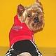 """Одежда для собак, ручной работы. Костюм спортивный""""Сердечко"""". Лиля Одежда для собак. Интернет-магазин Ярмарка Мастеров. Собаки, чихуахуа, хлопок"""