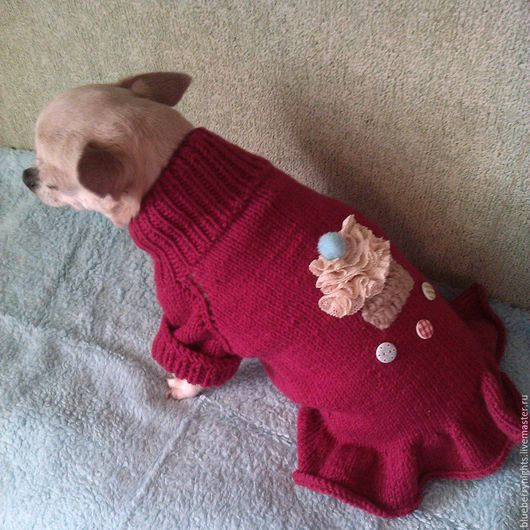 """Одежда для собак, ручной работы. Ярмарка Мастеров - ручная работа. Купить Свитерок для собачки """"Sweetie"""". Handmade. Брусничный, спицы, шерсть"""