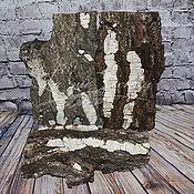 Материалы для творчества handmade. Livemaster - original item Birch bark, 1 EA.. Handmade.