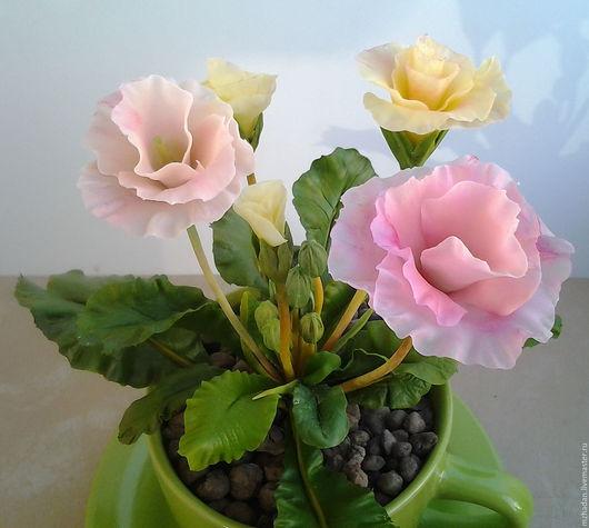 Комнатные цветы из полимерной глины.Авторская работа.Интерьерная композиция.