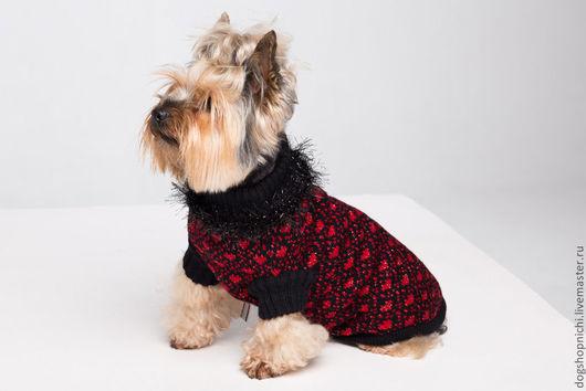 Одежда для собак, ручной работы. Ярмарка Мастеров - ручная работа. Купить Свитер для собак Black and Red авторская работа. Handmade.