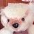 _a_l_i_c_e_ (bear-master) - Ярмарка Мастеров - ручная работа, handmade