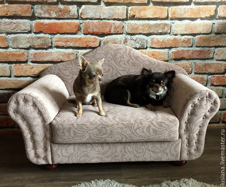 Couch for dogs 'Isadora', Accessories for Pets, Ekaterinburg,  Фото №1