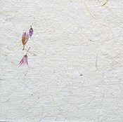 """Картины и панно ручной работы. Ярмарка Мастеров - ручная работа """"Сухоцветы"""" бумага для письма. Handmade."""